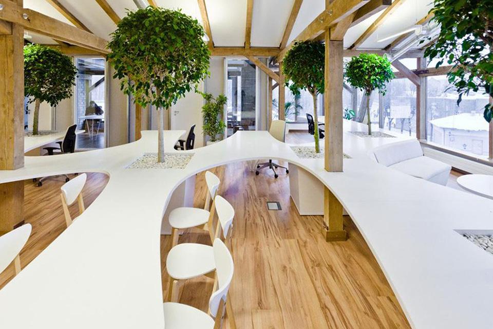 Sự kết hợp giữa sắc xanh với các chất liệu mới tạo diện mạo mới cho thiết kế văn phòng xanh hiện đại